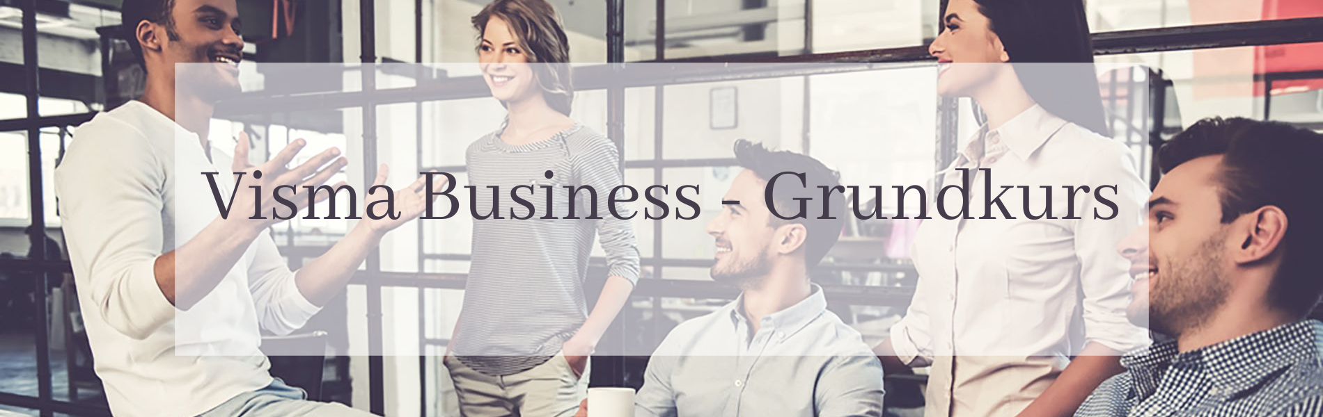 visma business utbildning